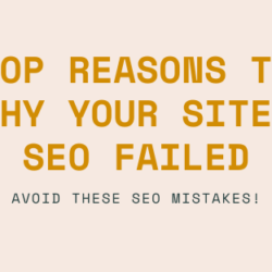 Top Reasons To why your site SEO Failed